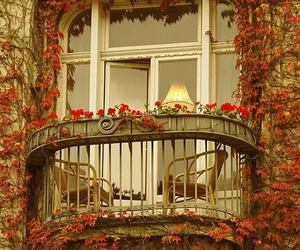 balcony, flowers, and autumn image
