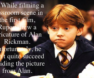 alan rickman, ron, and ron weasley image