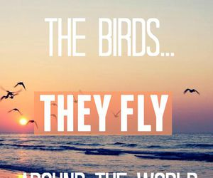 birds, tumblr, and wallpaper image