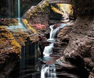 beautiful, bridge, and leaves image