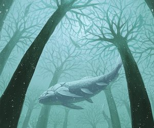 art, whale, and tree image