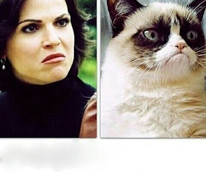 funny, once upon a time, and regina image