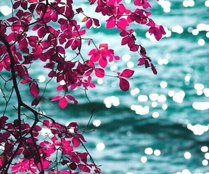 flowers, sea, and pink image
