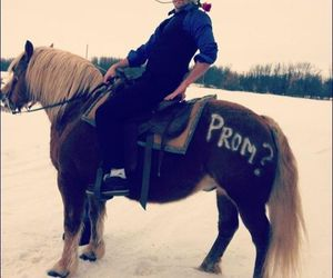 horse, Prom, and promposal image