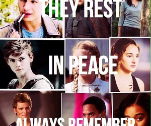 hunger games, divergent, and the maze runner image
