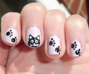 nails and cat image