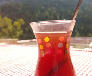 nature, Turkish, and tea image