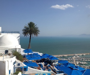 awesome, tunisia, and magnifique image