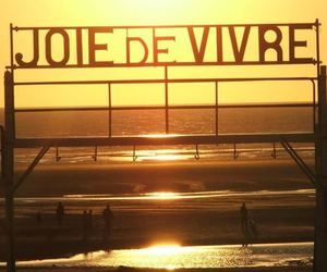 beach, joie, and life image