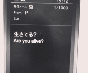japanese and text image