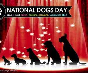 dog day and fancygreetings image