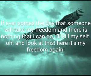 day, freedom, and here image