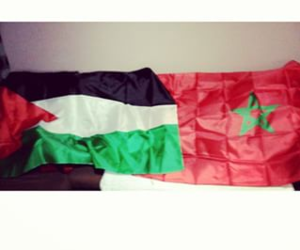morocco, palestine, and puissance image