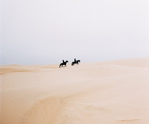 desert and camel image