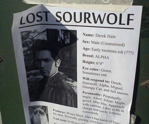 teen wolf, derek hale, and sourwolf image