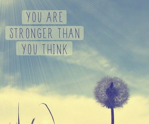 dandilion, inspiartion, and you are stronger image