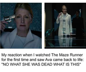 funny, the maze runner, and tmr image