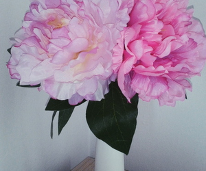 flower, my room, and pink image