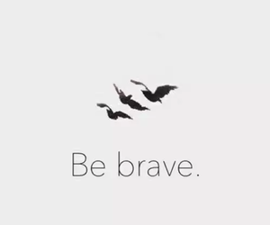 b&w, be brave, and birds image