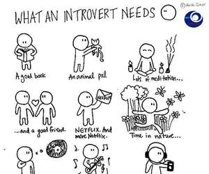 infj, introvert, and hsp image