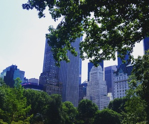 beautiful, Brooklyn, and Central Park image