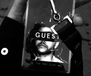 the weeknd and toronto image