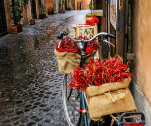 europe, peppers, and photography image