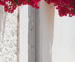 flowers, Greece, and nature image