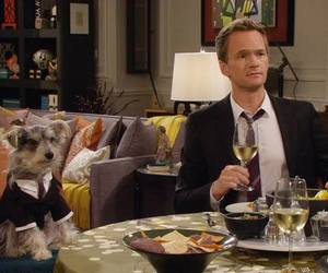 dog, himym, and how i met your mother image