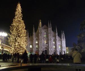 arbol, beautiful, and christmas image
