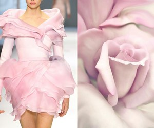 fashion and flower image