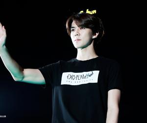 exo and sehun image