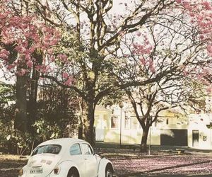 pink, car, and tree image