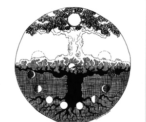 black&white, drawing, and tree image