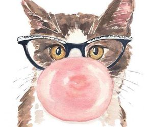 animals, cat, and glasses image