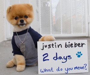 what do you mean and justin bieber image