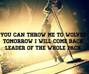 bands, quotes, and ptv image