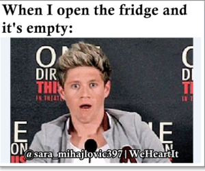 face, fridge, and funny image