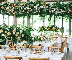 rose, table, and wed image