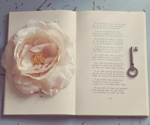 book, flower, and key image