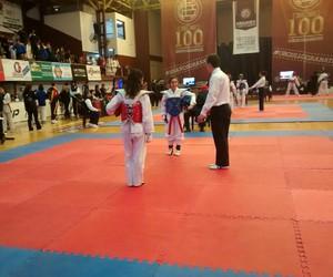 lucha, taekwondo, and torneo image