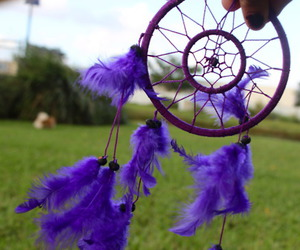 dream catcher, photography, and purple image
