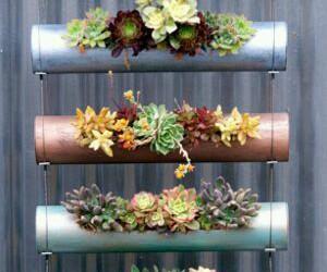 cactus, copper, and craft image