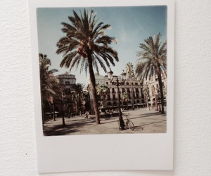 Barcelona, palms, and vacation image