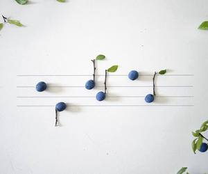fruit and music image
