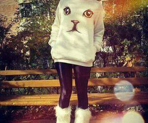 fashion, cat, and white image
