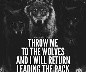 wolf, lobos, and best sayings image
