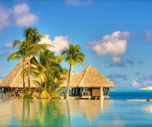 beach, hut, and water image