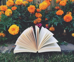 beautiful, books, and reading image