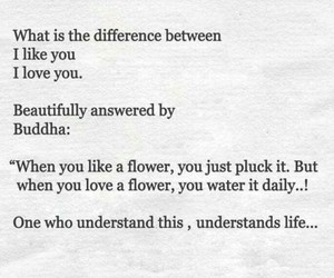 Buddha, difference, and flowers image